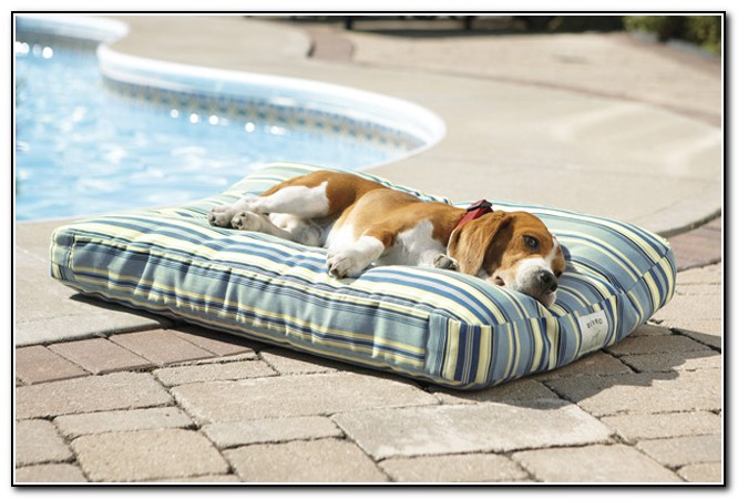 Outdoor Dog Beds Waterproof