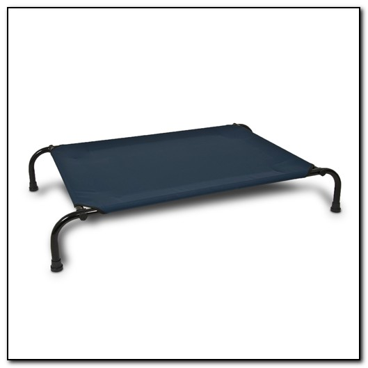 Raised Dog Beds Uk