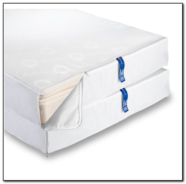 Bed Bug Mattress Covers Do They Work