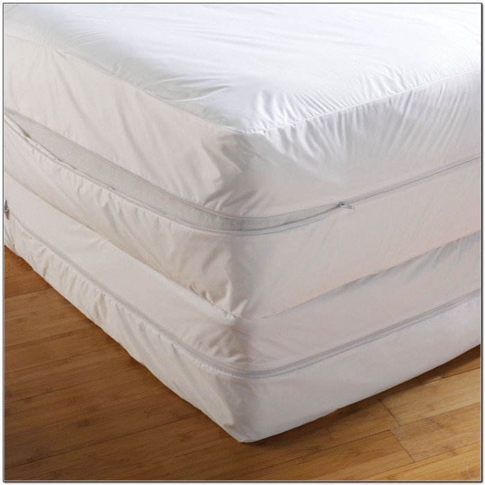 Bed Bug Mattress Covers Kmart
