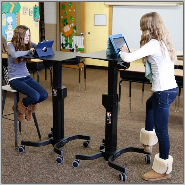 Dual Monitor Desk Mount Arm