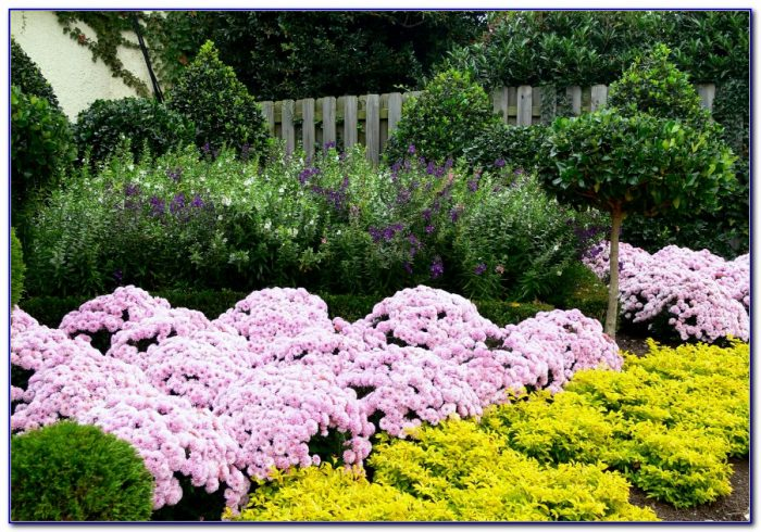 Busch Gardens Williamsburg Virginia Hours Of Operation Garden Home Design Ideas Z5nkwzon8651848
