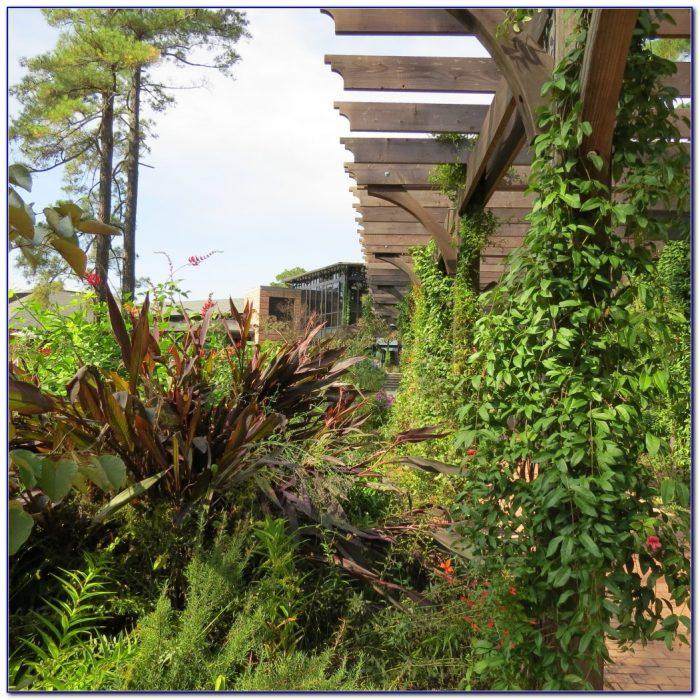 Hilton Garden Inn Las Cruces Facebook Garden Home Design Ideas 6ldy65rq0e52531