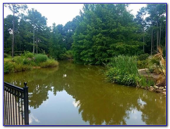 Cape Fear Botanical Garden Orangery Garden Home Design Ideas Rndlg0on8q50896
