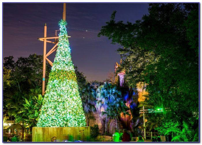 Busch Gardens Christmas Town Groupon Garden Home