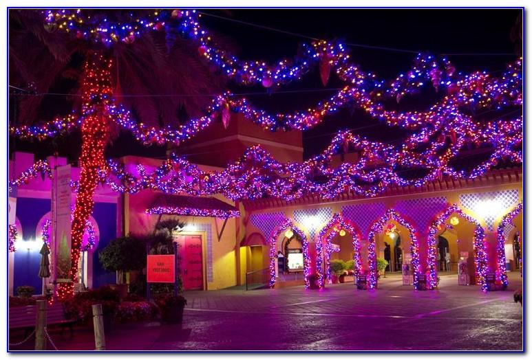 Christmas Town Busch Gardens Tampa Auditions Garden Home Design Ideas Rndlgx3n8q52052
