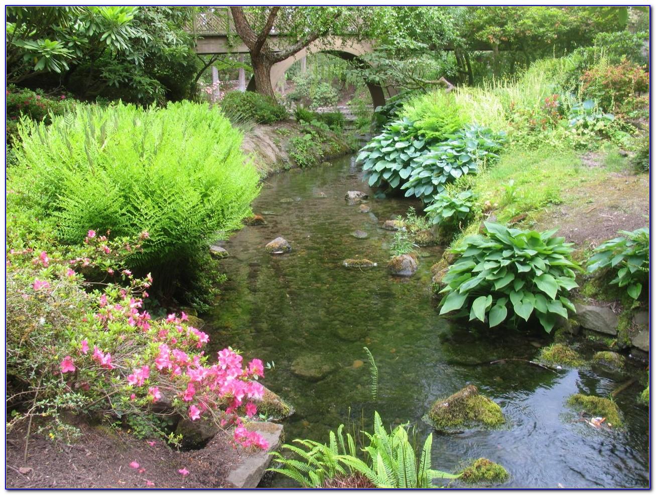 Crystal springs rhododendron garden admission garden home design ideas llq052zpkd50237 for Crystal springs rhododendron garden