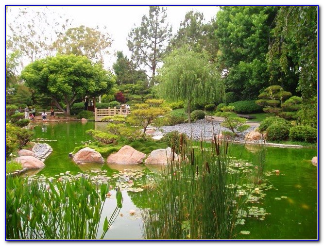 Earl burns miller japanese garden wedding garden home design ideas kwnmkqgqvy50638 for Portland japanese garden admission