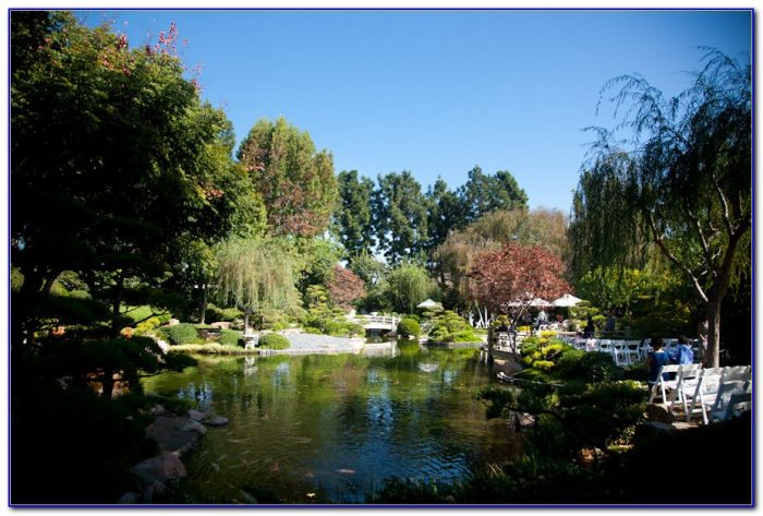 Earl Burns Miller Japanese Garden Long Beach Ca