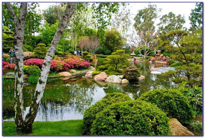 Earl Burns Miller Japanese Garden At Csulb Garden Home Design Ideas Amdlwjvnyb50628