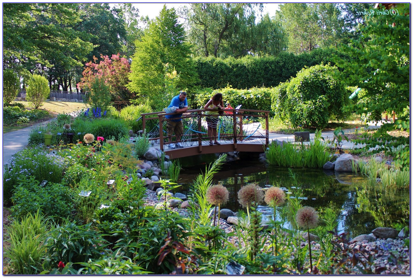 Green Bay Botanical Gardens Events Download Page Home Design Ideas Galleries Home Design