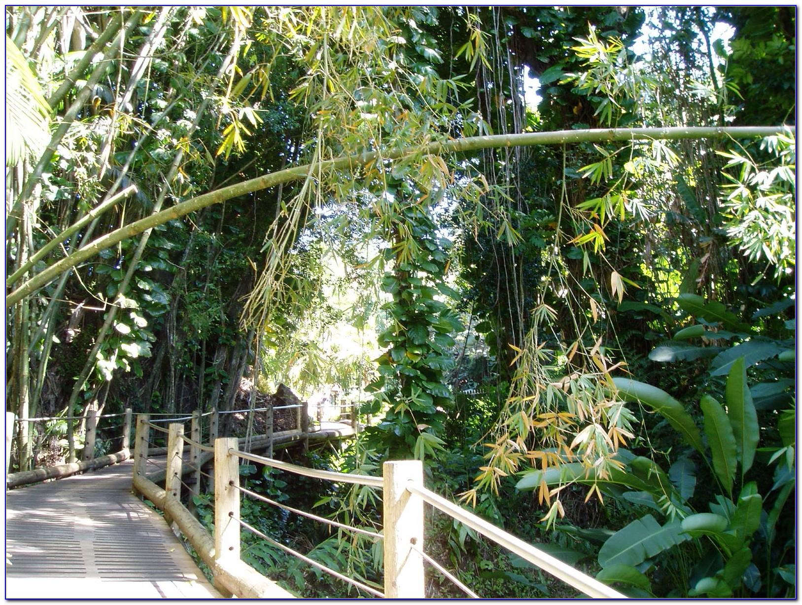 Botanical Gardens Discount Desert Botanical Garden Coupon Ideas For Home Decor San Diego