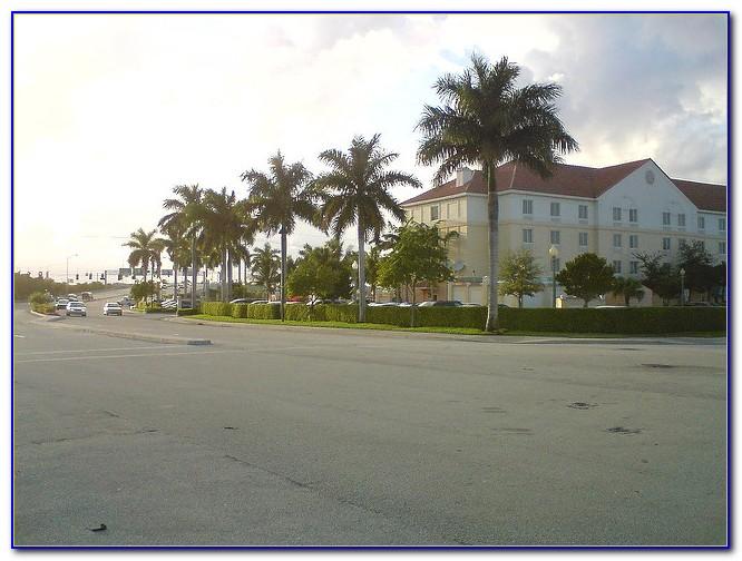 Hilton Garden Inn Boca Raton Florida Garden Home Design Ideas K2dw9j8pl351477