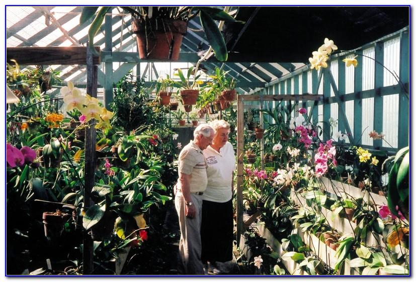 Hilton garden inn corpus christi beach garden home - Hilton garden inn corpus christi ...