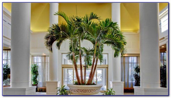 Hilton Garden Inn West Palm Beach Gardens Fl