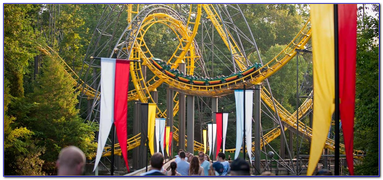 Hotels Near Busch Gardens Tampa With Free Shuttle