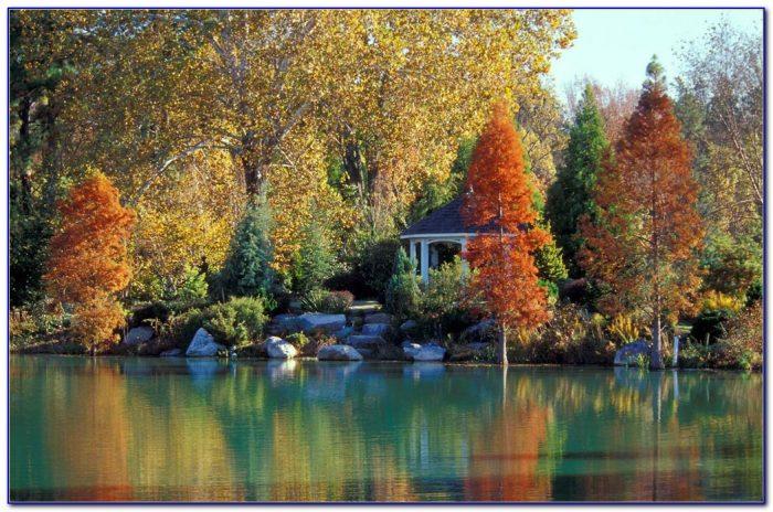 Lewis Ginter Botanical Gardens Jobs