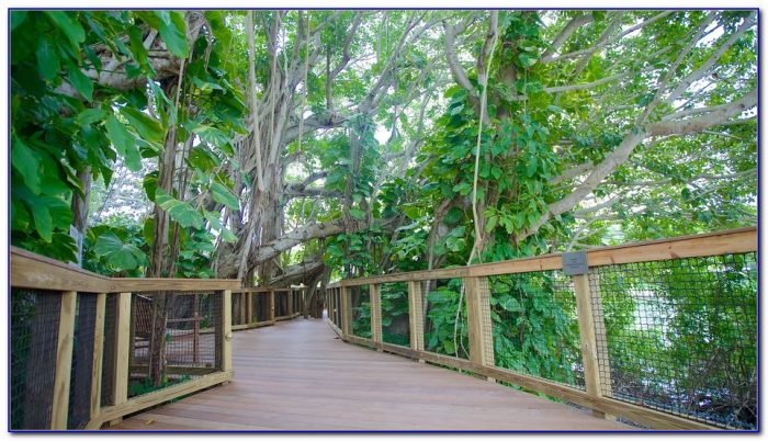 Marie Selby Botanical Gardens Coupons