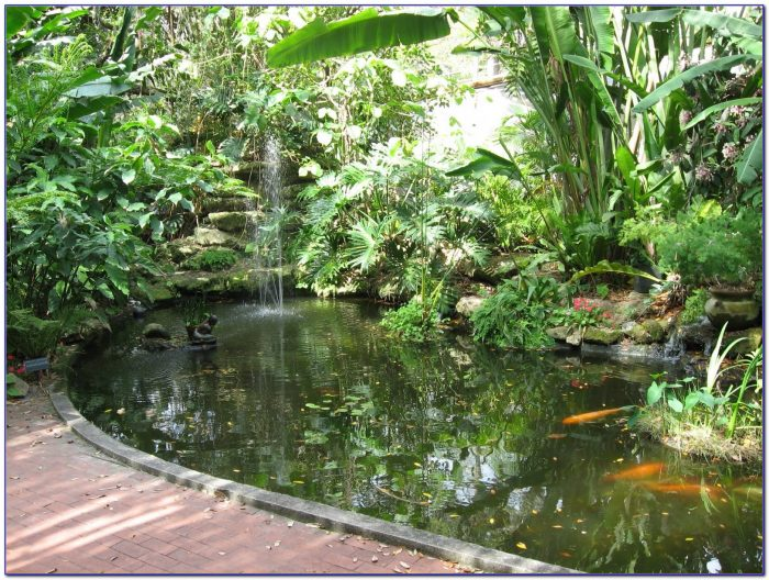 Marie Selby Botanical Gardens Volunteer