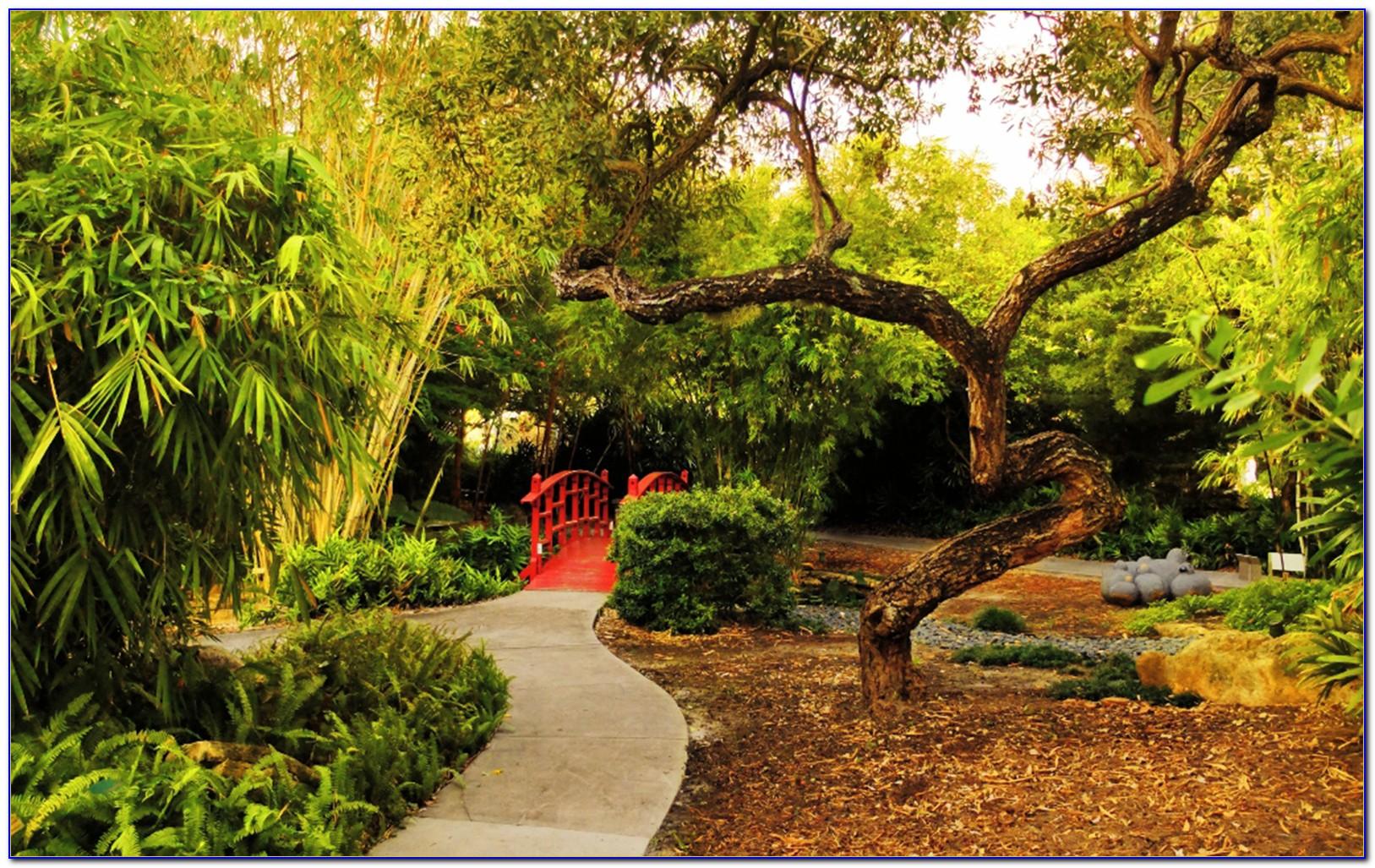 Miami beach botanical garden address download page home for Botanical garden design