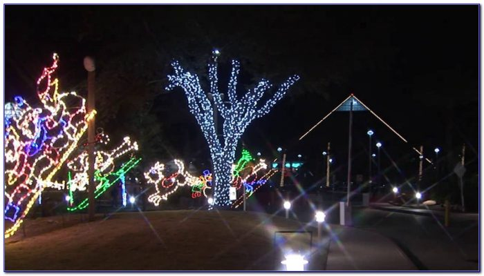 Moody Gardens Festival Of Lights Times Garden Home Design Ideas Ojn3kvmnxw51160