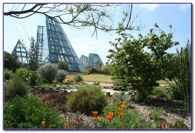 San Antonio Botanical Gardens Coupon