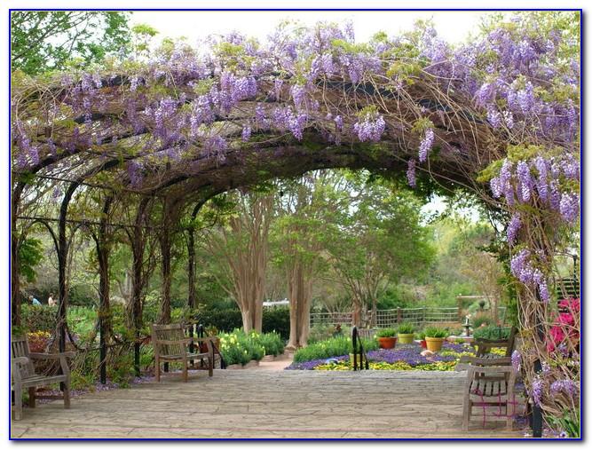 San Antonio Botanical Gardens Wedding Garden Home Design Ideas 6zdax2mnbx50351