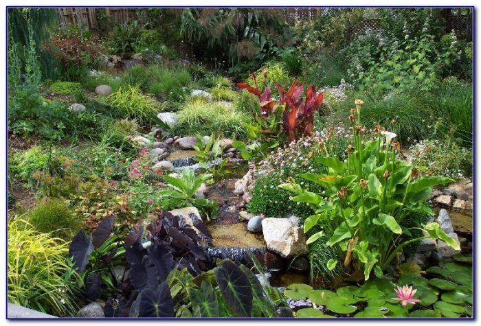 San Diego Botanic Garden Membership Garden Home Design Ideas Z5nkwrrn8650592