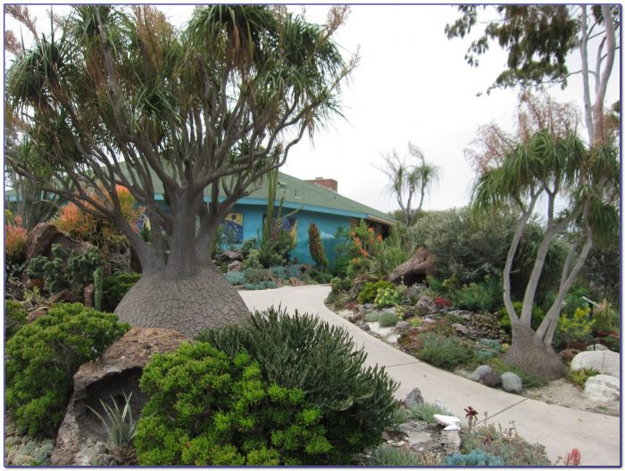 San Diego Botanic Garden Map Garden Home Design Ideas Yaqodabpoj50590