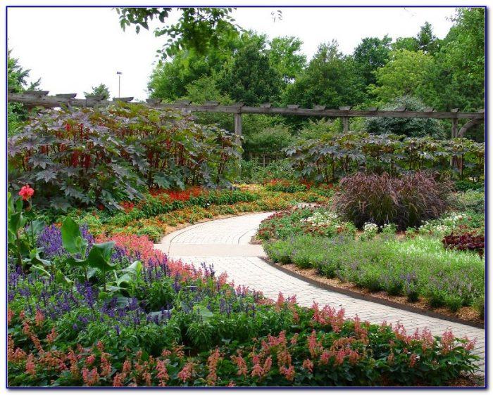 La Jolla International Gardens San Diego Garden Home Design Ideas God63nmq4l51366