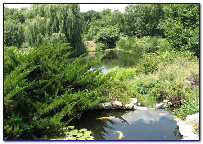 San Antonio Botanical Garden Membership Garden Home Design Ideas 5zpew0xd9350341