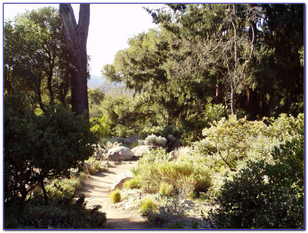 Santa barbara botanical gardens map garden home design for Botanical garden design