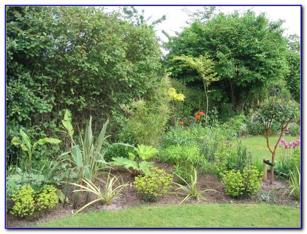 Suburban Lawn And Garden Jobs