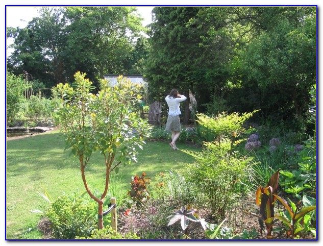 4 items · LAWN AND GARDEN. Category. Category View Listings with Coupons & Special Offers. Results for: LAWN AND GARDEN in Wilmington, DE Suburban Lawn .