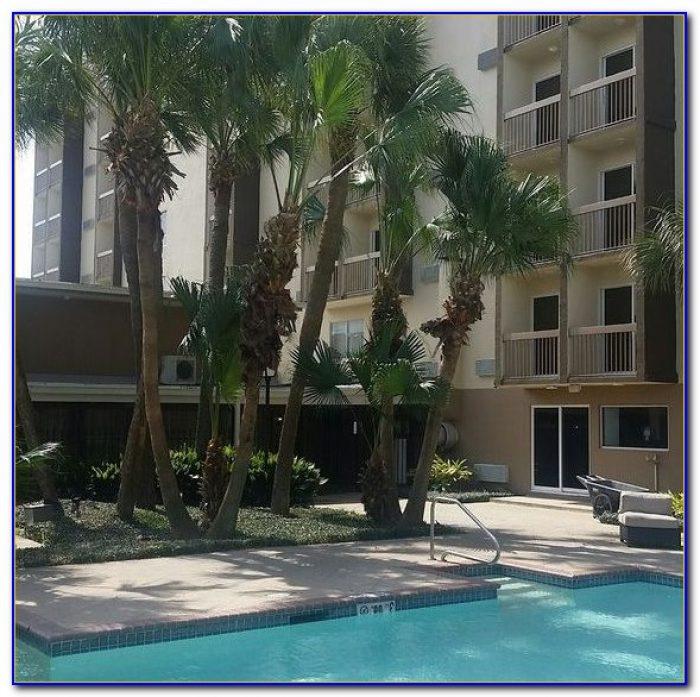 Hilton Garden Inn New Orleans Airport Kenner Garden Home Design Ideas 4vn4r49qne55139