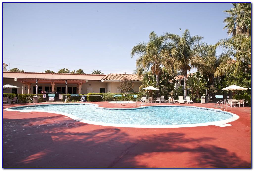 Wyndham Garden San Jose Airport San Jose Ca Garden