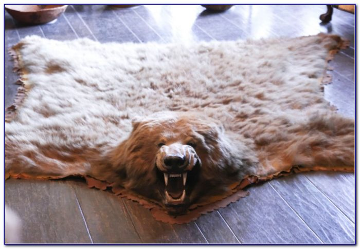 Bear Skin Rugs Australia Download Page Home Design Ideas