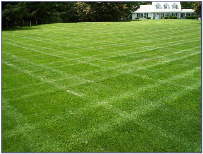 Bluegrass Lawn And Garden Louisville Kentucky Garden Home Design Ideas Ord5kybpmx53255