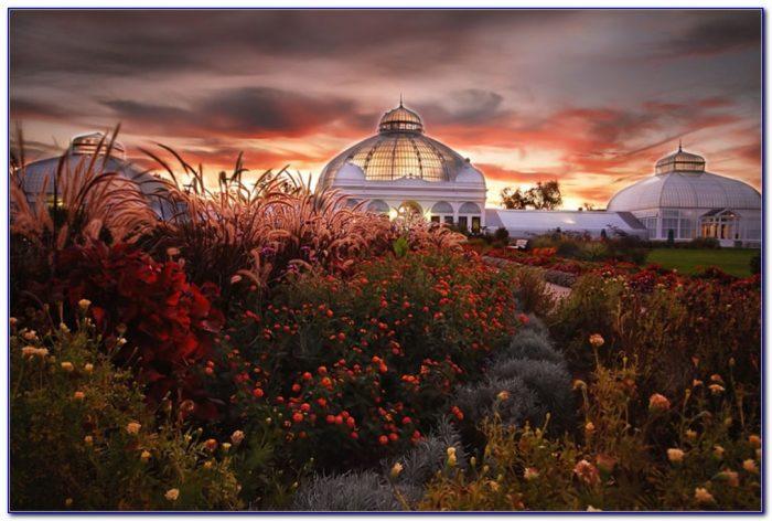 Botanical Gardens Buffalo Ny Address