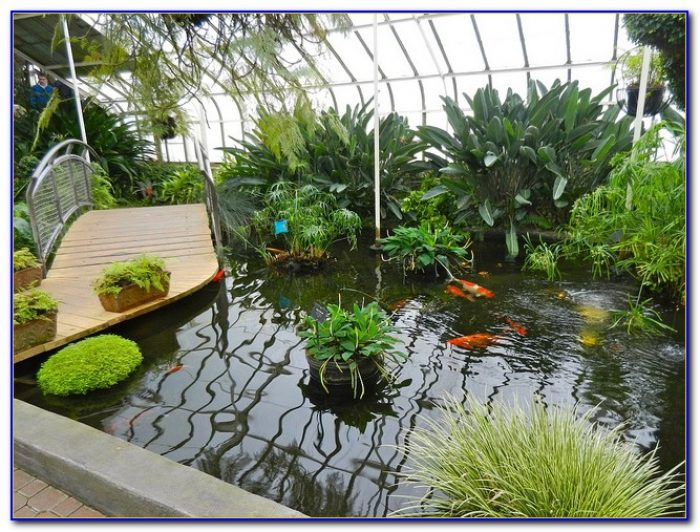 botanical gardens buffalo ny address garden home design ideas llq0lvzqkd52437. Black Bedroom Furniture Sets. Home Design Ideas