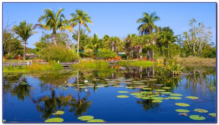 Naples botanical gardens flower show garden home - Botanical gardens naples florida ...