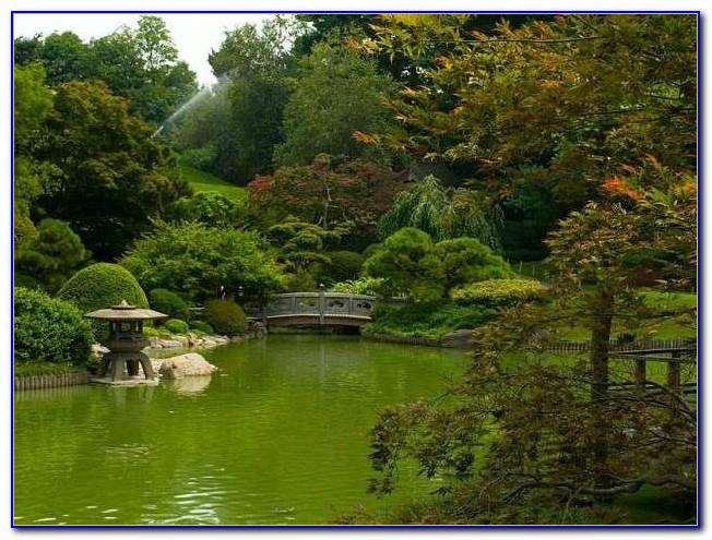 Brooklyn Botanic Garden New York United States Download