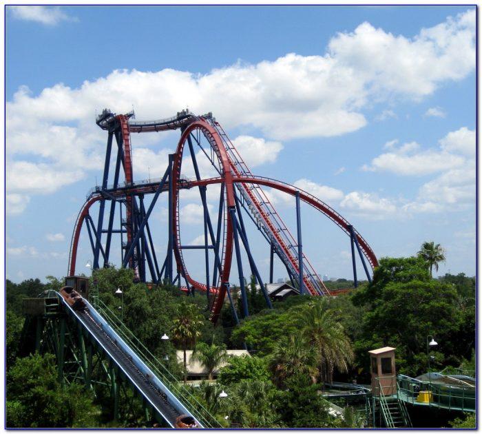 Busch Gardens New Roller Coaster Video
