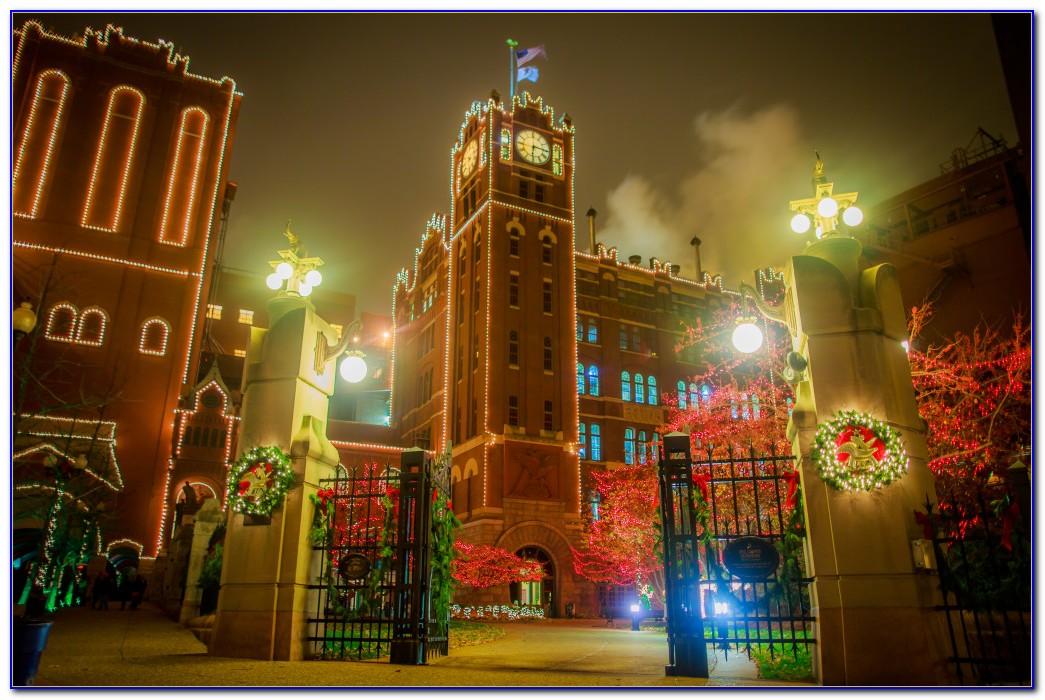 Busch Gardens Theme Park St Louis Download Page Home