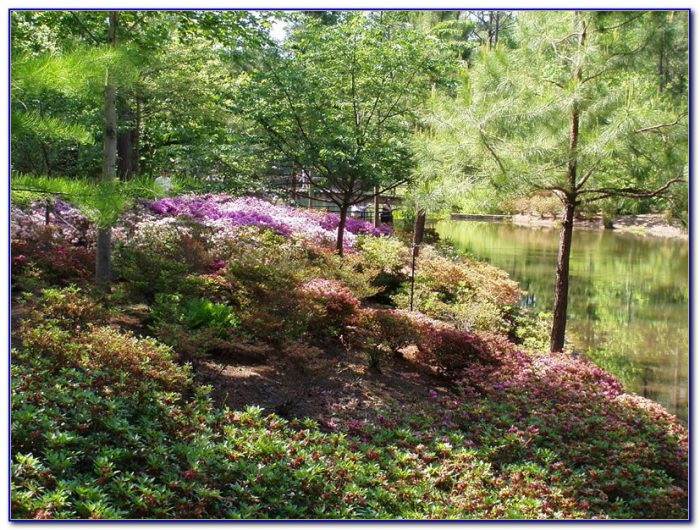 Callaway Gardens Pine Mountain Ga Directions Garden Home Design Ideas Ymngmjdqro53056