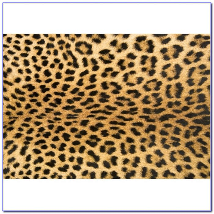 Cheetah Bed Set Target Beds Home Design Ideas