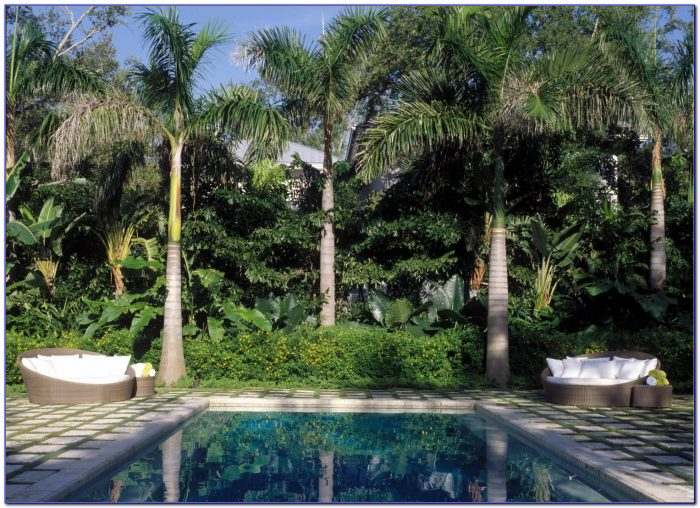 Comcast Palm Beach Gardens Office Hours Garden Home Design Ideas Wlnxvpxq5254887