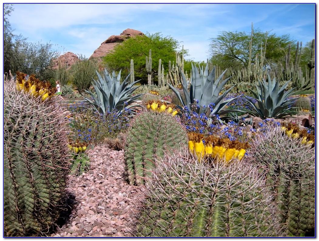 Desert botanical garden phoenix map garden home design for Botanical garden design