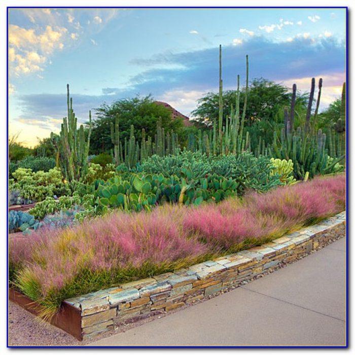 San Antonio Botanical Garden Restaurant Garden Home