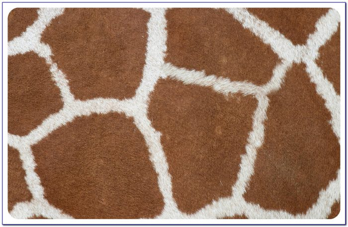 Giraffe Print Rug Canada Rugs Home Design Ideas